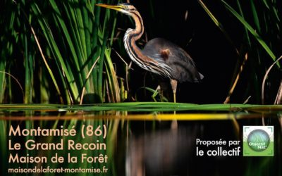 Exposition Photo Nature 2019