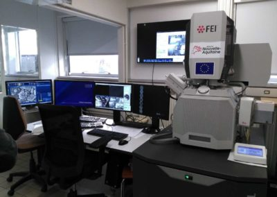 Le monstre : microscope électronique à balayage de Poitiers